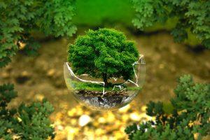 iscrizione albo gestori ambientali